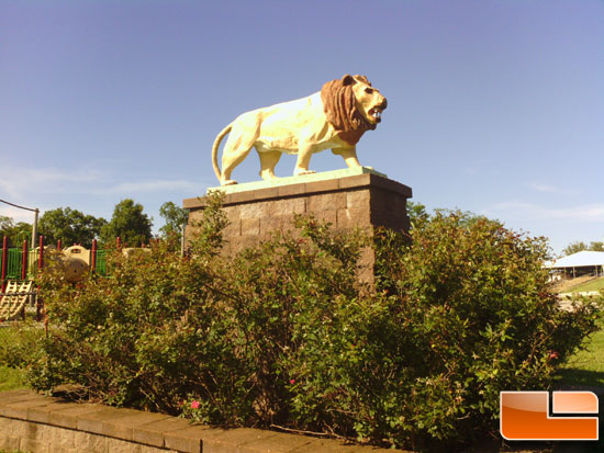 ASUS Transformer Picture of Lion Statue