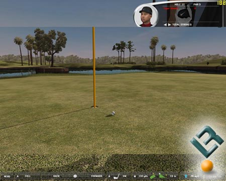 Tiger Woods 2006 Benchmarking