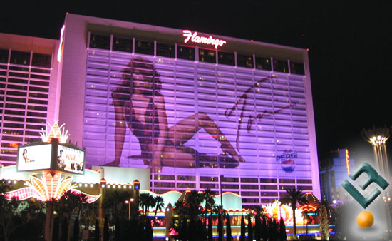 Ad on Flamingo Hotel