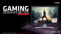 AMD FreeSync Display Driver
