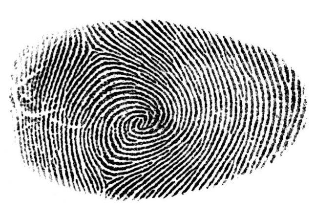 Synaptics Talks Data encryption vs. Data Scrambling