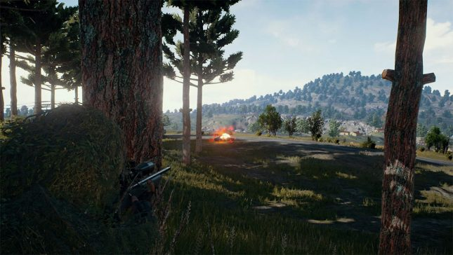 Playerunknown Bans Popular Twitch Streamer for Team Killing, Triggering Ensues