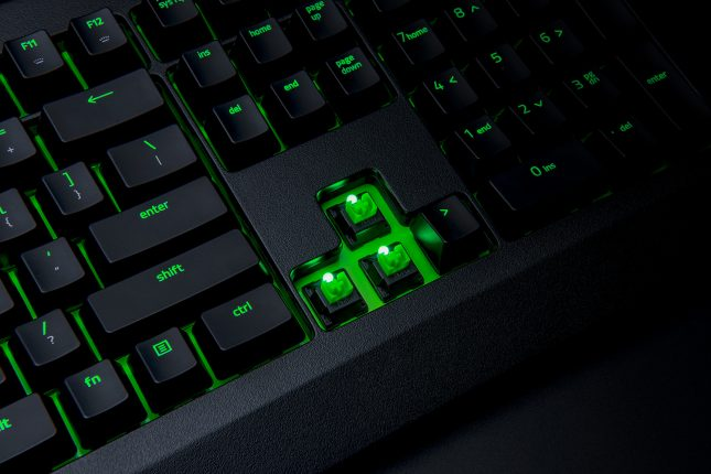 Razer BlackWidow Ultimate - Switches